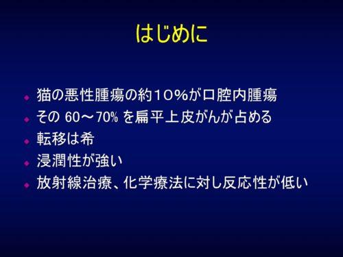 %e7%8c%ab%e3%81%ae%e6%89%81%e5%b9%b3%e4%b8%8a%e7%9a%ae%e3%81%8c%e3%82%93%e3%83%9b%e3%83%bc%e3%83%a0%e3%83%9a%e3%83%bc%e3%82%b8%e7%94%a8-2